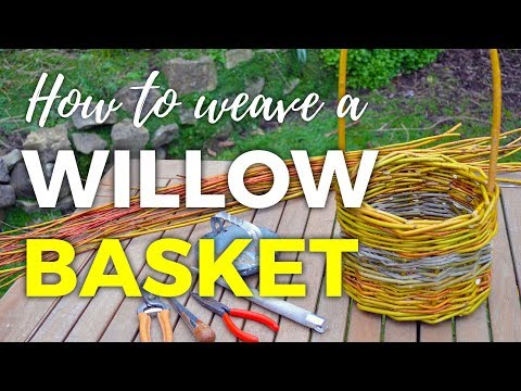 How to Weave a Willow Basket -- part 2