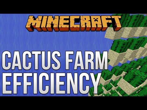 Cactus Farm Efficiency! [Minecraft Myth Busting 82]