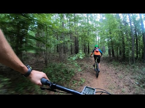 Local Trail Time: Tung Nut at San Felasco