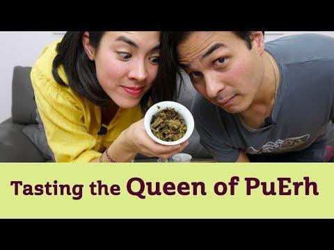 Tasting the Queen of PuErh