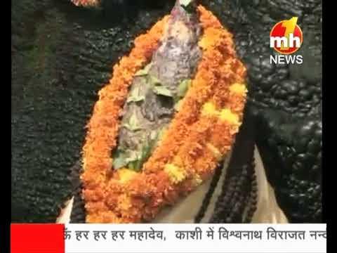 भगवान शिव की पवित्र गुफा शिव खोड़ी से सुबह की आरती का प्रसारण |  18-06-2018