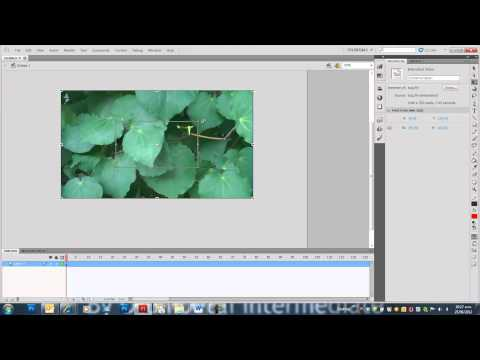How to import and animate over video in Adobe Flash CS5