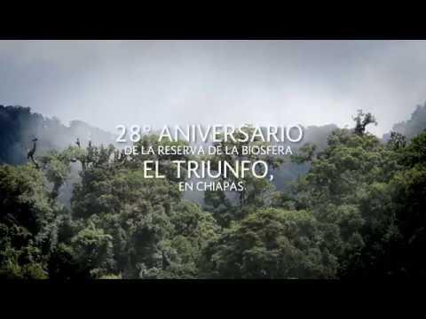 El Triunfo en Chiapas, fábrica de agua