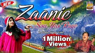 Zaanie Sou Yas Raye Aadan | Most Popular Kashmiri Song | Lyrics. Habib Parray