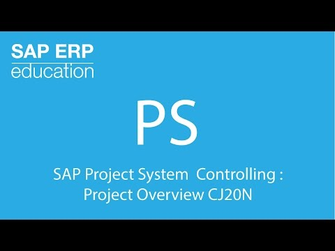 SAP Project System Controlling : Project Overview СJ20N
