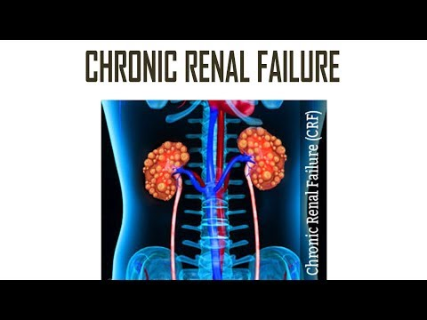 Chronic Renal Failure | Chronic Kidney Disease | Causes, Symptoms, Diagnosis, Pathology, Treatment
