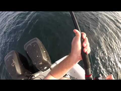 How to catch red grouper in the Gulf of Mexico