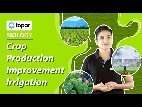 Class 9 Biology: How to improve crop production? | Improvement of food resources (CBSE/NCERT)