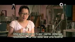 Documental - China, el gigante asiático. Educación, la clave del progreso