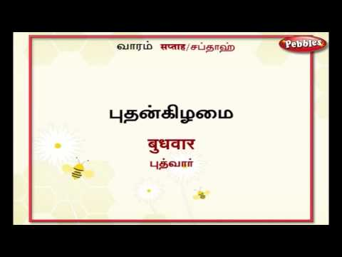 Learn Hindi Through Tamil   Learning Hindi   Lesson - 04