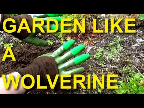 New! - Honey Badger Garden Gloves Review