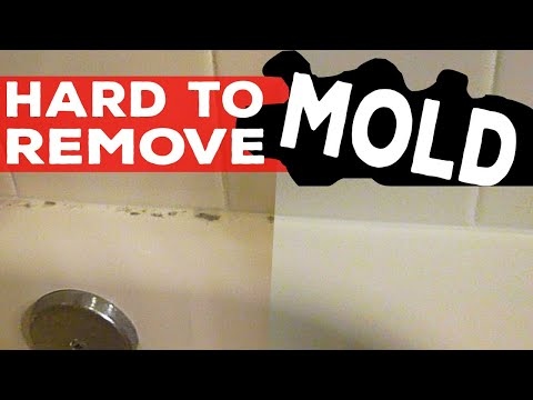 Black Mold Treatment - How to Clean Difficult to Remove Black Mold Stain in Shower