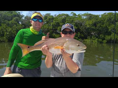April 2018 Tampa Bay Fishing Report - Snook, Redfish, Grouper, Kingfish