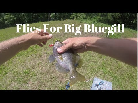 First Time Using Fly Lures For Bluegill