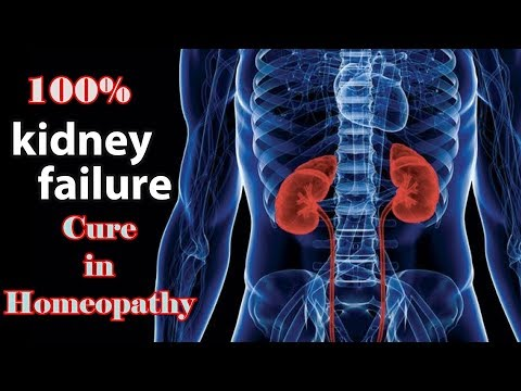 Best Homeopathy Medicine for Lowering Creatinine