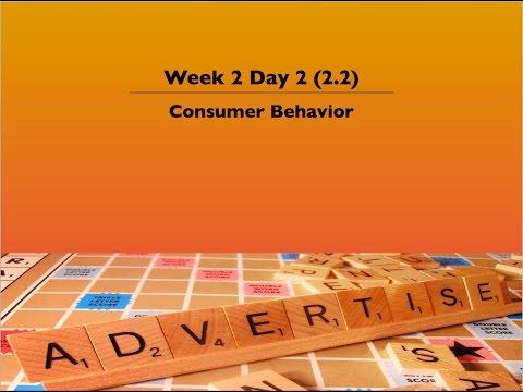 2.2 Consumer Behavior
