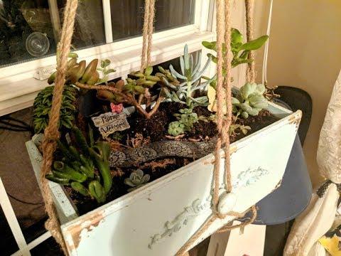 How to Make a Succulent Fairy Garden!