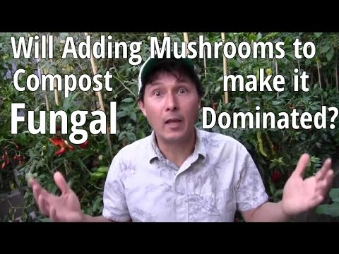 Will adding Mushrooms to Compost Make it Fungal Dominated & More Gardening Q&A