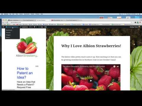 Adding Your Affiliate Hop Link From ClickBank.com to your Blog/Website