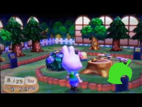 Animal crossing new leaf: Catching all the bugs, and complete bug museum!