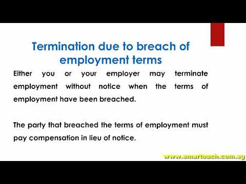 Payslip Singapore : Termination of Employment - Termination Without Notice