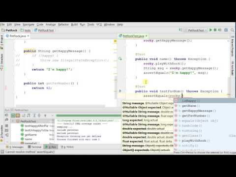 JUnit 4 with IntelliJ: Exceptions, Ignore, ...