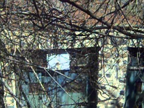 Abandoned houses 1890s -1900s Fort Lee N.J.