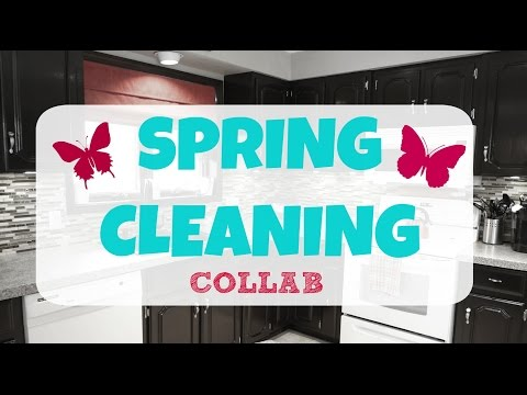 Spring Cleaning Collab - My Kitchen