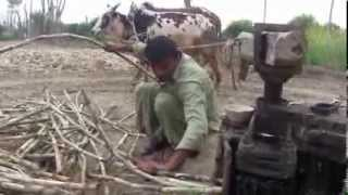 How to make Gurr from Sugercane in a village 6 Feb 2011 Sargodha Pakistan
