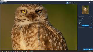Make a negative or inverse image in Topaz Studio - PakVim