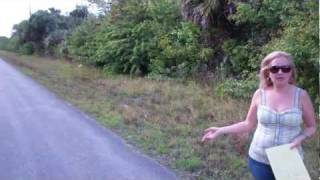 Buy Land Cheap in Florida, Lots for Sale in Florida, Florida Land for Sale