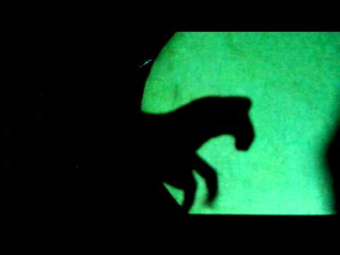 Shadow Puppet Cat and Horse
