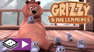 Grizzy ve Lemmingler | Her şey nasıl başladı? | Boomerang