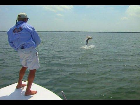 Fly Fishing Tarpon on the Flats of Marathon Florida Keys
