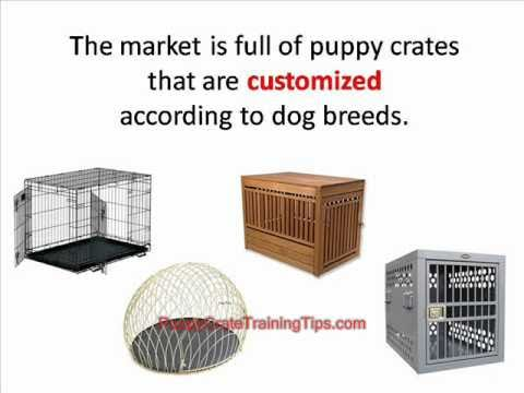 Puppy Crate Training - Choosing the Right Crate for Your Puppy