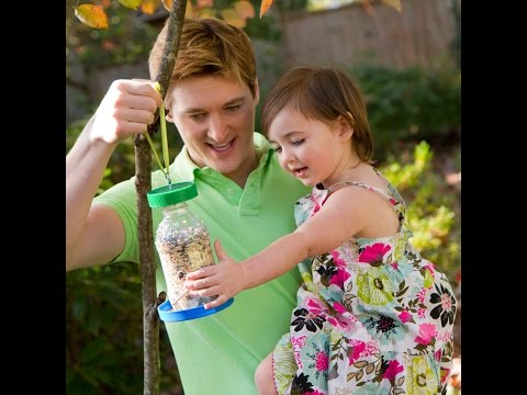 Bird Feeder DIY - Made From Recycled Bottle