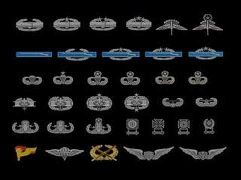 Badges of the US Military