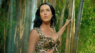 Top 10 Best Katy Perry Music Videos