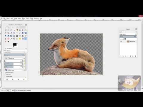 GIMP: How to Make a Background Transparent