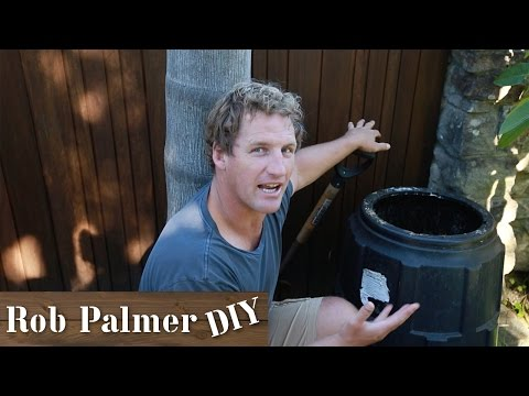 How To Get Rid of Maggots from your Compost | DIY Tip