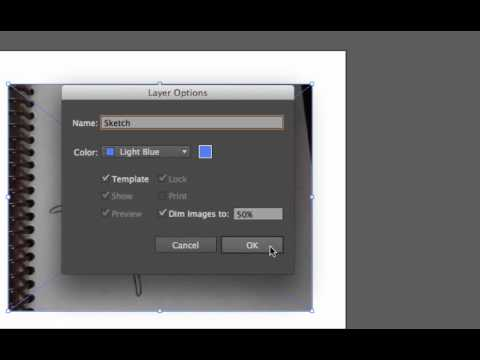 Placing a Sketch for Tracing in Adobe Illustrator