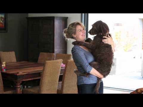 Caitlin McColl and Lyra ~ Melbourne ~ Ragamuffin Pet Photography ~ Home Movies