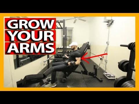 FULL ARM AND SHOULDER WORKOUT WITH DUMBBELLS (Full Follow Along) Gain Mass and Build Muscle