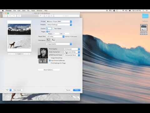 How to Print in Black and White on a Mac Pictures, Word, PDF, Excel
