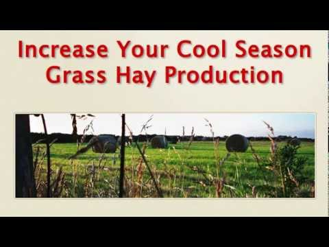 Increase Hay Production - Weed Control Without Herbicides