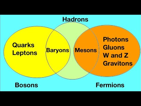Fundamental particles - bosons and fermions for beginners: from fizzics.org