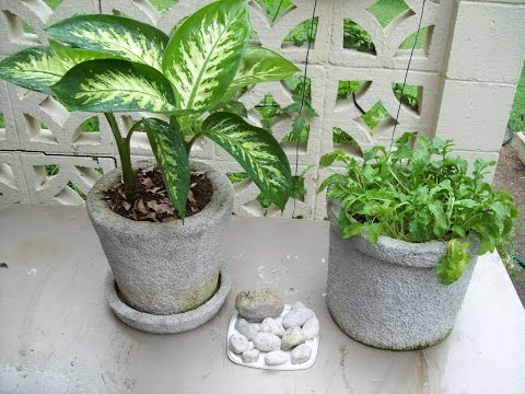 Garden Pot Easy Build