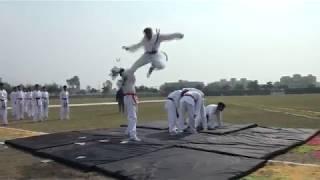 Taekwondo Team Performance - 4th Parents Day 2018