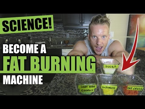 TURN YOUR BODY INTO A FAT BURNING MACHINE FOR LIFE [AVOID INSULIN RESISTANCE]