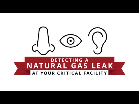 Detecting a Natural Gas Leak